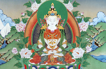 Purifying Your Karma Through Mantra (Teaching Series)