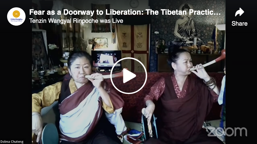 Fear as a Doorway to Liberation, Part 3